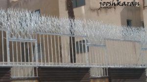 jooshkaran 40 300x169 - حفاظ و نرده ی روی دیوار بوته ای خاری در بروجن ، اصفهان و شهر کرد